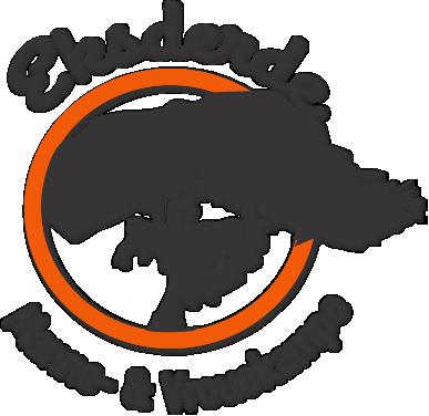 eksderde logo 2